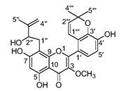 新颖芳香类化合物异戊烯基化学物取得新进展