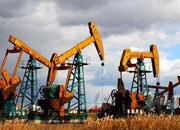 """大庆油田""""走出去"""":未来海外油气将占一半"""