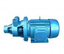 W型单级直联旋涡泵