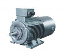 YZP系列冶金及起重用变频调速三相异步电动机