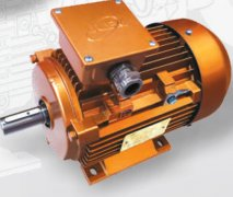 JL系列节能铝壳三相异步电动机