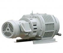 RV系列罗茨真空泵