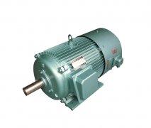 YVP系列变频调速系列三相异步电动机