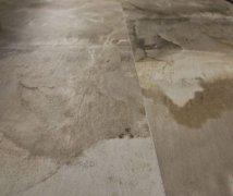 HORN安娜系列 客厅地砖 地面