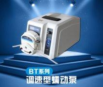 BT系列调速型蠕动泵 手动调节控制源