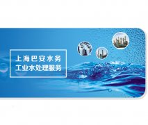上海巴安水务工业水处理服务